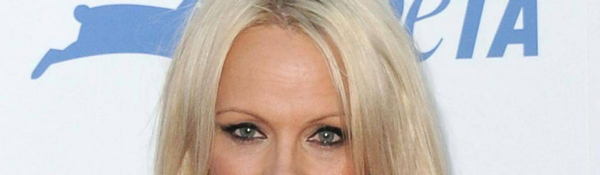 What Pamela Anderson is doing now?